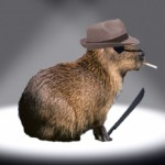 Profile picture of KillerCapybara