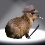 Profile picture of KillerCapybara